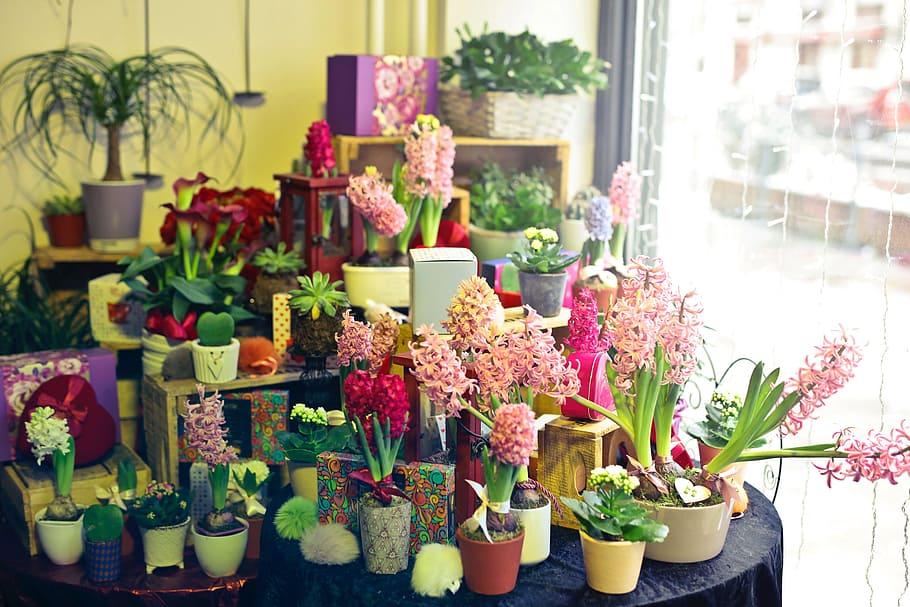 Inside flower shop in trivandrum